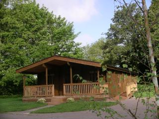 Willowbank Lodges/Kingfisher - Pewsey vacation rentals