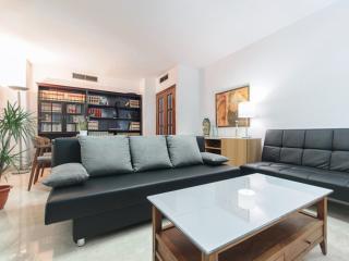 3 bedroom Apartment with Internet Access in Granada - Granada vacation rentals