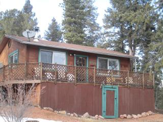 Evergreen Cottage – Divide, CO - Divide vacation rentals