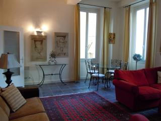 Le Saint Vincent - Nice vacation rentals