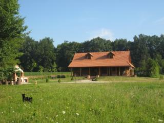 Nice 1 bedroom Marusevec Cottage with Internet Access - Marusevec vacation rentals