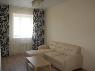 Romantic 1 bedroom Kazan Apartment with Internet Access - Kazan vacation rentals