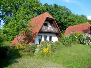 Finnhäuser am Vogelpark Marlow - Marlow vacation rentals