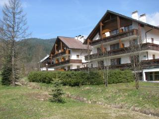 Apartment 13, Haus Bergblick 2 - Gosau vacation rentals
