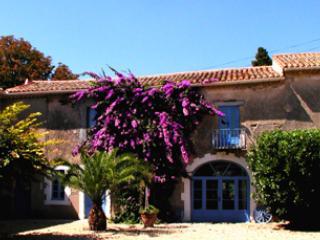 Villa Annabelle - Pezenas vacation rentals