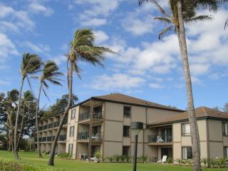 Pono Kai 2 Bedroom Ocean Front D101 - Kapaa vacation rentals