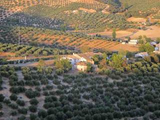 Olive Grove Farmhouse Apartment - Guadix vacation rentals