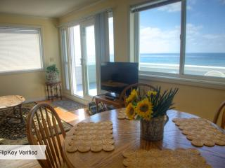 Beautiful 1 bedroom Apartment in Pacific Beach - Pacific Beach vacation rentals