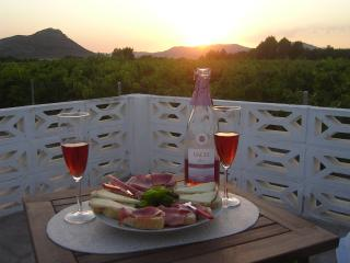 Beautiful Finca with Internet Access and Dishwasher - Villena vacation rentals
