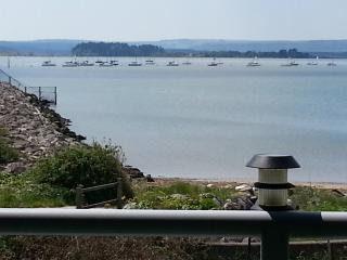 Guillemot House  by the waters edge poole harbour - Poole vacation rentals