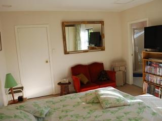 Nice Guest house with Internet Access and A/C - Taupo vacation rentals