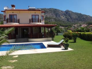 Beautiful Villa with A/C and Satellite Or Cable TV - Gocek vacation rentals