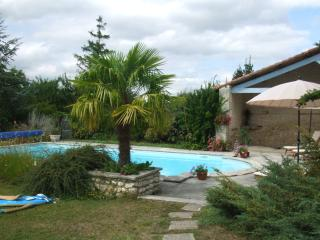 Generous tasteful house with gorgeous views, relaxing large garden & pretty pool - Barbezieux-Saint-Hilaire vacation rentals