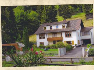 1 bedroom Apartment with Internet Access in Frammersbach - Frammersbach vacation rentals