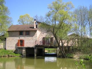 Beautiful cosy watermill in Burgundy - Montpont-en-Bresse vacation rentals