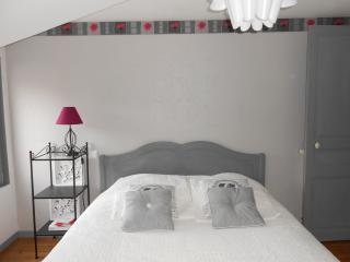 MAISON VICTORINE - SAUMUR - Saumur vacation rentals