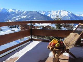 Central Verbier & great view: Amb306 - Verbier vacation rentals