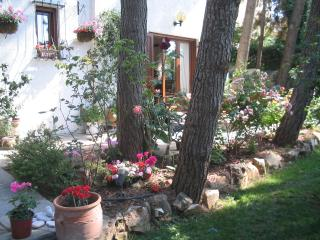 Charming Athens vacation House with Long Term Rentals Allowed - Athens vacation rentals