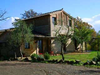 Wonderful cozy Fienile farmhouse at Borgo Castelrotto near Buonconvento - Buonconvento vacation rentals