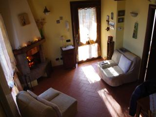 1 bedroom Apartment with Internet Access in Montescudaio - Montescudaio vacation rentals