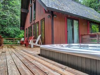 Hikers Paradise, secluded on 5 acres , Hot Tub  *Spring Break Specials* - Rhododendron vacation rentals