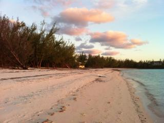 Beach Front, Pink Sand Gaulding Cay N. Eleuthera - Gregory Town vacation rentals