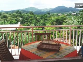 1 bedroom Apartment with Internet Access in Riviere-Salee - Riviere-Salee vacation rentals