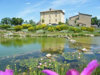 Romantic 1 bedroom Montecastelli Pisano Farmhouse Barn with Internet Access - Montecastelli Pisano vacation rentals