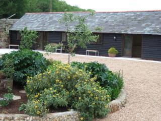 1 Mill Cottages, rural self catering cottage - Ashford vacation rentals
