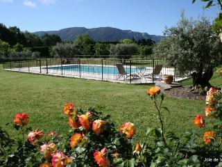 JDV Holidays - Maison St Felix, Luberon - Robion vacation rentals