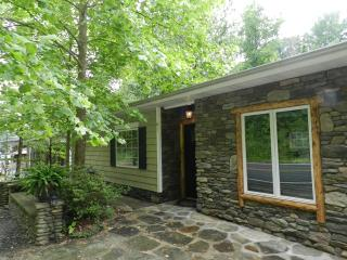 Cottage On River With Huge Backyard & Fire Pit - Bat Cave vacation rentals