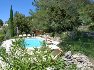 Charm'In Provence ! - Vaucluse vacation rentals