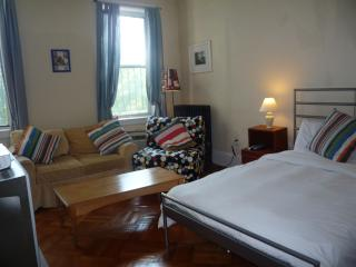 MANHATTAN-EAST VILL- STUDIO-slps 2+2=4 - New York City vacation rentals