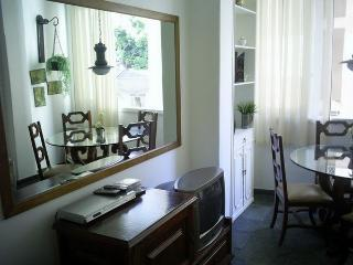 Quiet cozy apartment in a high level neighbourhood - Rio de Janeiro vacation rentals