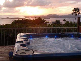 Plumeria: Great Ocean Views, Sunsets, Heated Pool, - Saint John vacation rentals