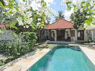 PEACEFUL 2 BDRM, POOL, GARDEN, 250 MTRS FROM BEACH - Sanur vacation rentals