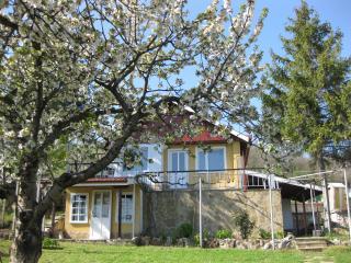 Sunshine Villa by the Sea/Organic Farm&Eco Retreat - Balchik vacation rentals