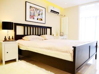 city center 5min walk to Metro 2bdr apt up 4guests - Beijing vacation rentals
