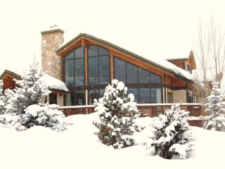 Luxury 5BR on Mtn; Sleeps16;Amazing Views,Hot Tub - Steamboat Springs vacation rentals