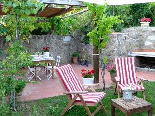 stone barn renovated just 20 minutes from Florence - Capraia e Limite vacation rentals
