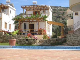 Pitsidia Villas - Pitsidia vacation rentals