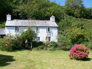 Nice Cottage with Internet Access and Wireless Internet - Upton Cross vacation rentals