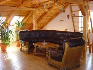 Spacious 4 bedroom Townhouse in Siauliai - Siauliai vacation rentals