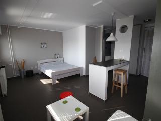 mini tash apartment - Belgrade vacation rentals