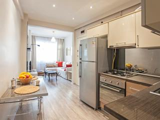 Modern chic central flat 5pp-entrance - Istanbul vacation rentals
