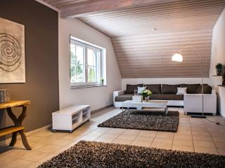 Cozy 2 bedroom Apartment in Ransbach-Baumbach - Ransbach-Baumbach vacation rentals