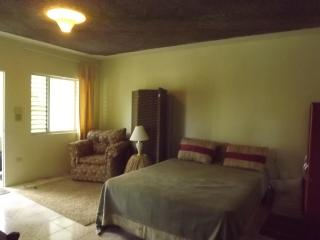 Fernfully Studio close to Ocho rios Town Center! - Ocho Rios vacation rentals