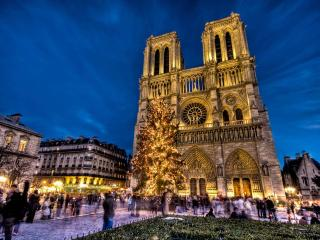 UNBEATABLE LOCATION~STEPS TO NOTRE DAME~BLVD ST GERMAIN~STUNNING 3 BR APT WITH VIEWS! - Paris vacation rentals