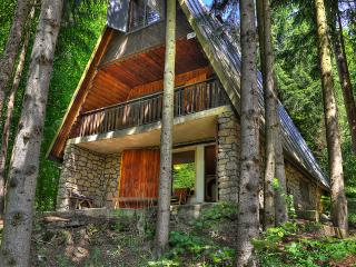 Cottage in the forest near Trencín, Slovakia - Nove Mesto nad Vahom vacation rentals