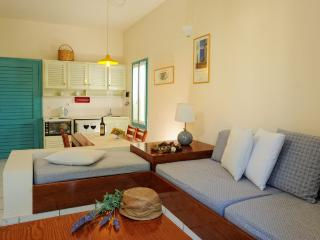 Nice Condo with Internet Access and A/C - Agia Marina vacation rentals
